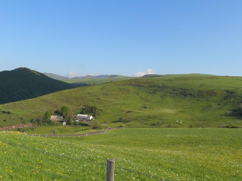 Le Plomb du Cantal et le col de Prat de Bouc Dscn0212