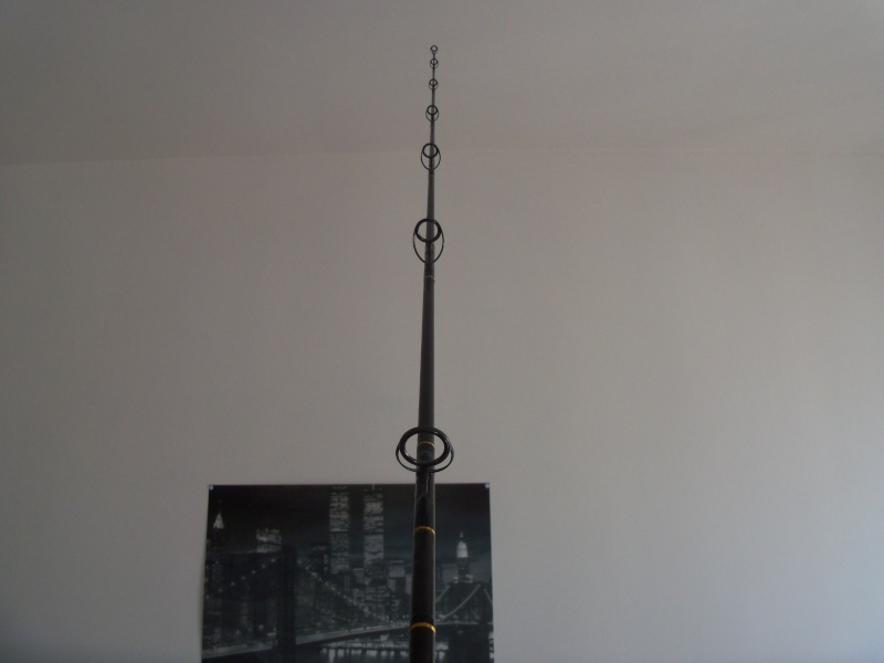 [spin] Tuna popping rod  100_0518