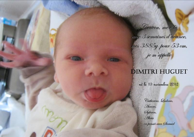 Les novembrettes, décembrette 2012  - Page 7 Dimitr10