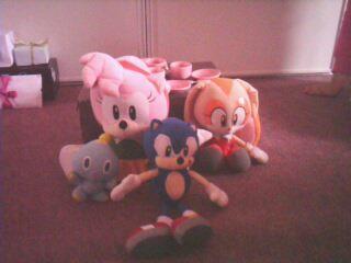 L'anniversaire de Sonic Img05712