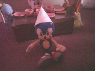 L'anniversaire de Sonic Img05810