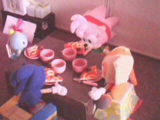 L'anniversaire de Sonic Img05812