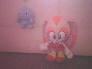 L'anniversaire de Sonic Img06010