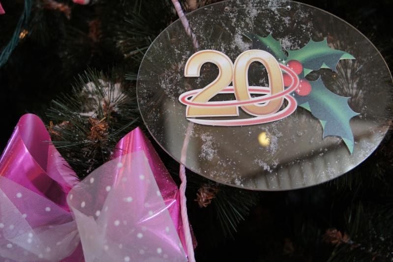 Le 20ème anniversaire de Disneyland paris  - Page 9 Dsc05214