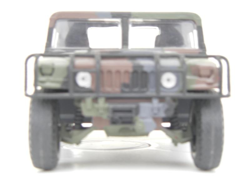 Ein Hummer in Tarnung Sth70060