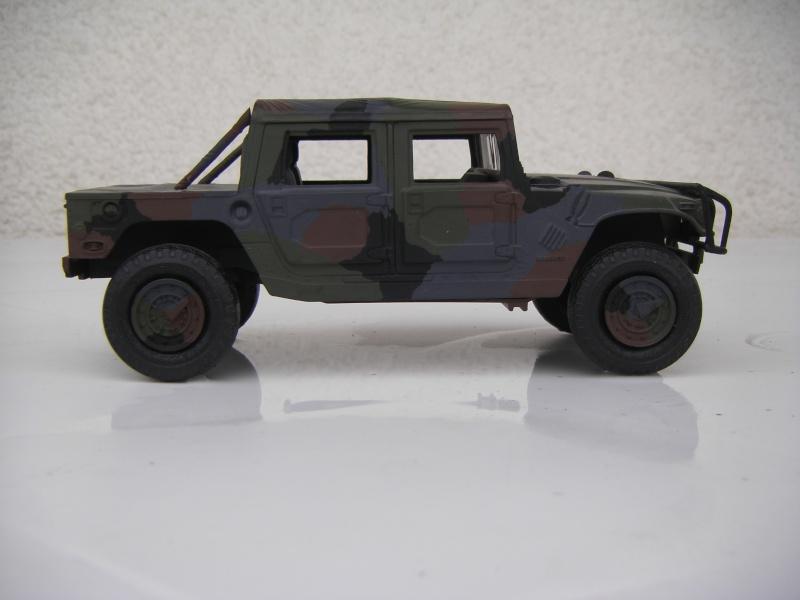 Ein Hummer in Tarnung Sth70061