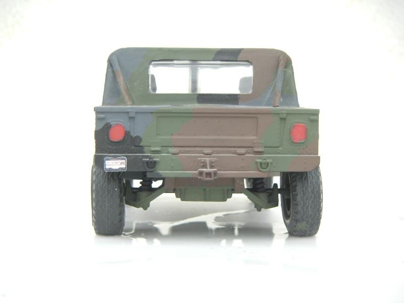 Ein Hummer in Tarnung Sth70062