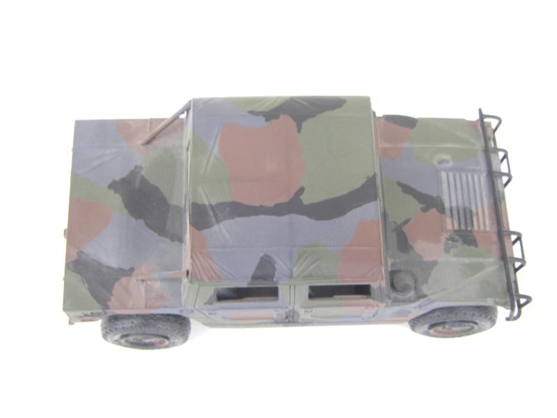 Ein Hummer in Tarnung Sth70063