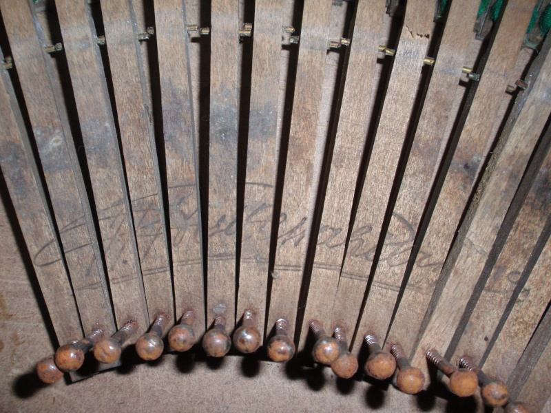 Harmonium catastrophique (Balthasar-Florence) P2185112