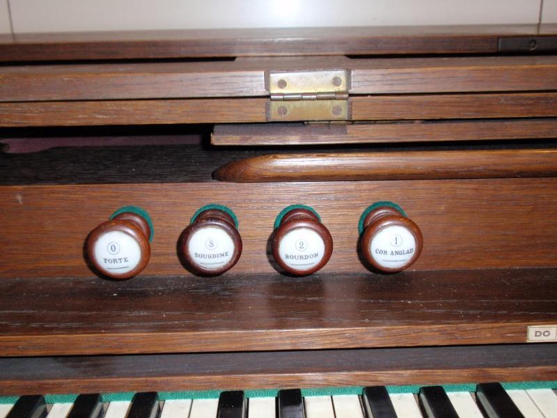 Harmonium identification P6065513