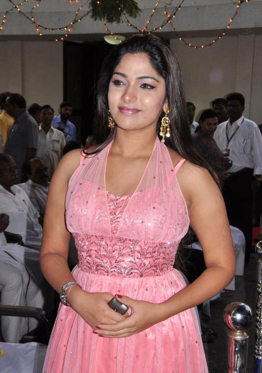 Bhanu in Pink Dress Cute Photos Bhanu-13