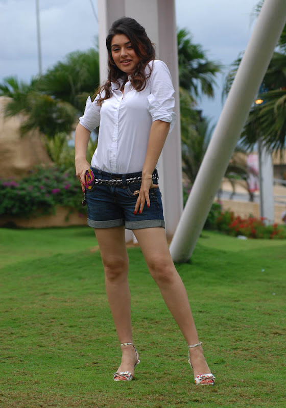 Hansika Spicy in Shorts Photo Gallery Hansik10