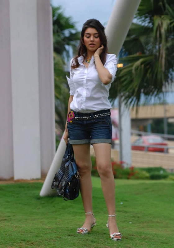Hansika Spicy in Shorts Photo Gallery Hansik13