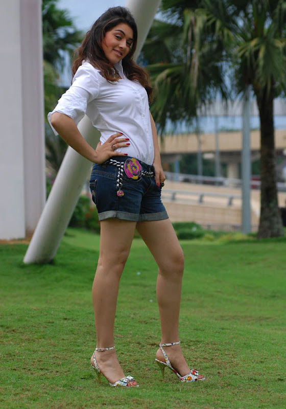 Hansika Spicy in Shorts Photo Gallery Hansik14