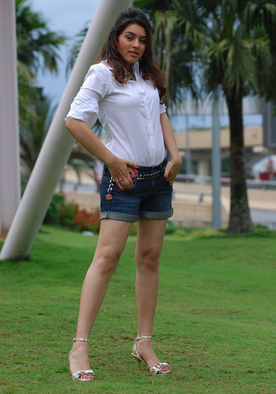 Hansika Spicy in Shorts Photo Gallery Hansik15