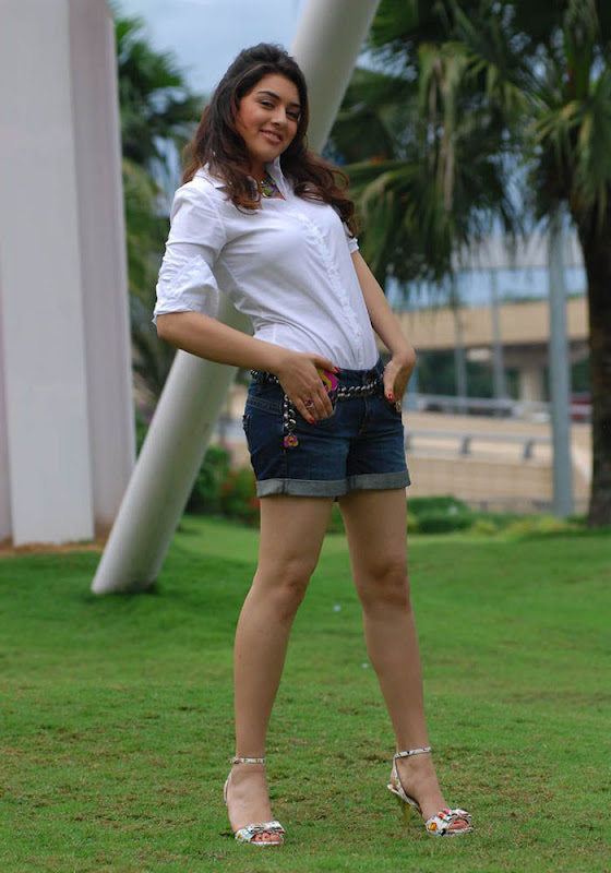 Hansika Spicy in Shorts Photo Gallery Hansik16