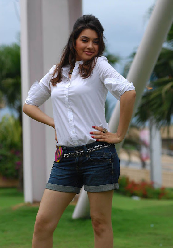 Hansika Spicy in Shorts Photo Gallery Hansik17