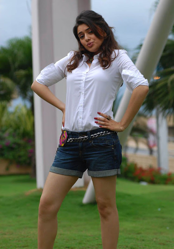 Hansika Spicy in Shorts Photo Gallery Hansik18