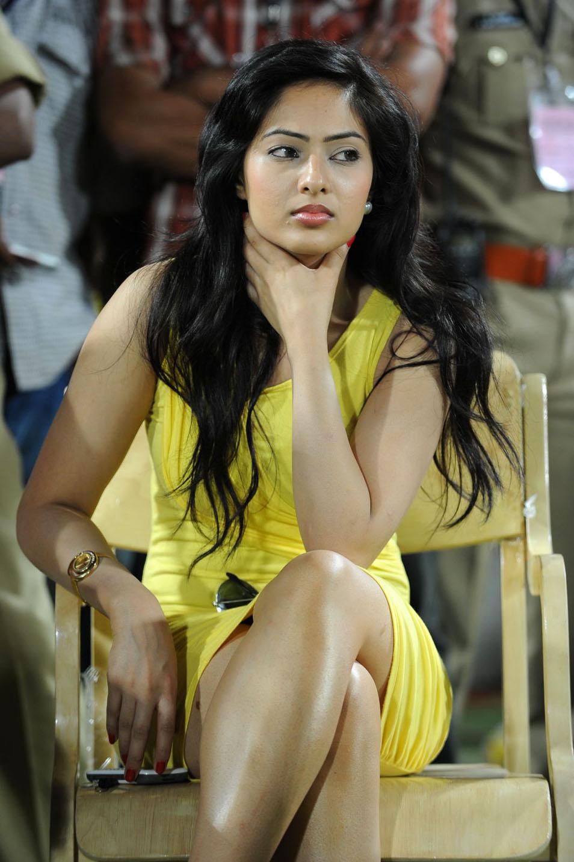 Nikesha Patel Spicy Photo Gallery Nikesh10