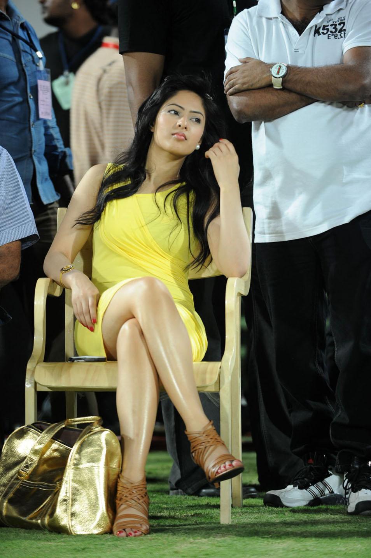 Nikesha Patel Spicy Photo Gallery Nikesh11