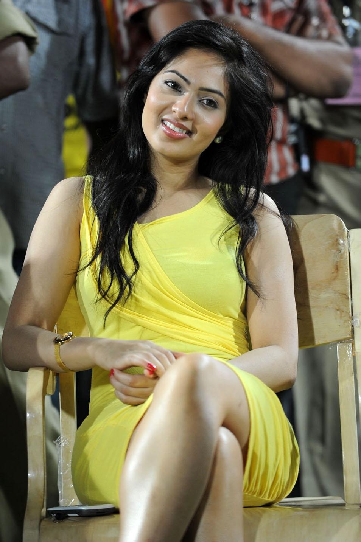 Nikesha Patel Spicy Photo Gallery Nikesh13