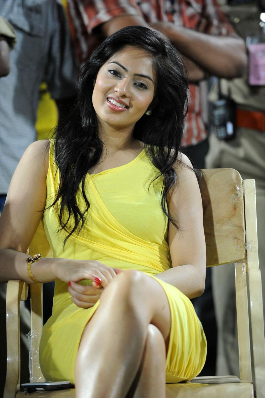 Nikesha Patel Spicy Photo Gallery Nikesh15