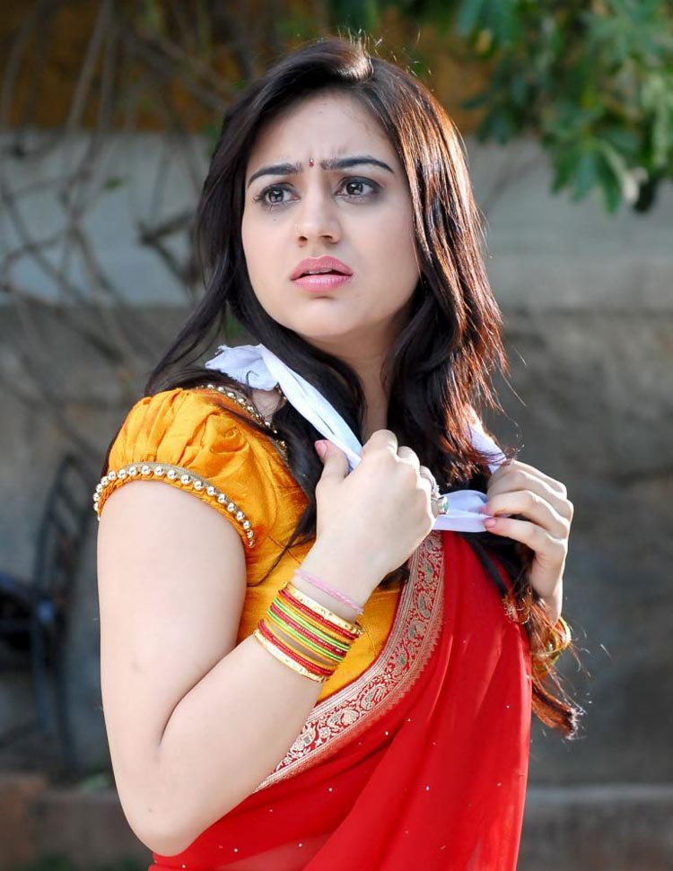 Aksha Spicy in Half Saree Pics Shatru10