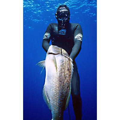La chasse ou pêche sous-marine (CSM) 2112-614