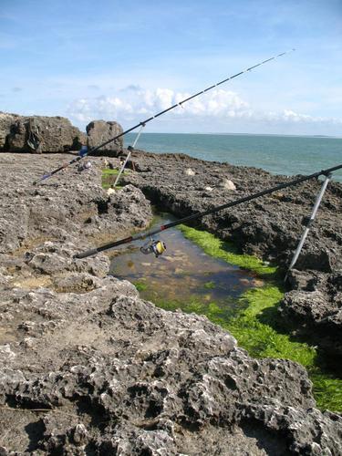 Quelques techniques pour  la pêche  au bord de mer  Au-lan10