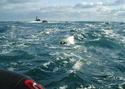 La chasse ou pêche sous-marine (CSM) Meragi10