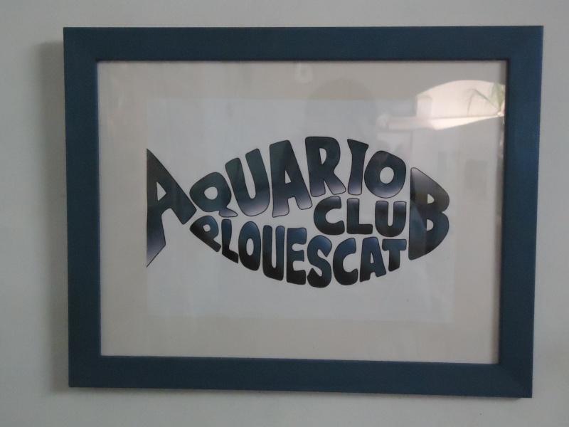 ACTIVITES CLUB AQUARIOPHILE DE PLOUESCAT Dsc01118