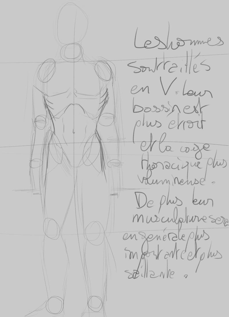 [How to?] Dessiner le corps humain : proportions et conseils de mise en place[by Dexteria] Corps610