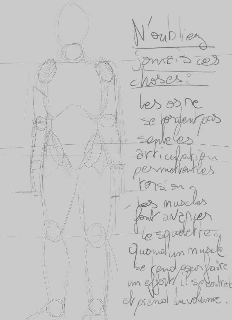 [How to?] Dessiner le corps humain : proportions et conseils de mise en place[by Dexteria] Corps910