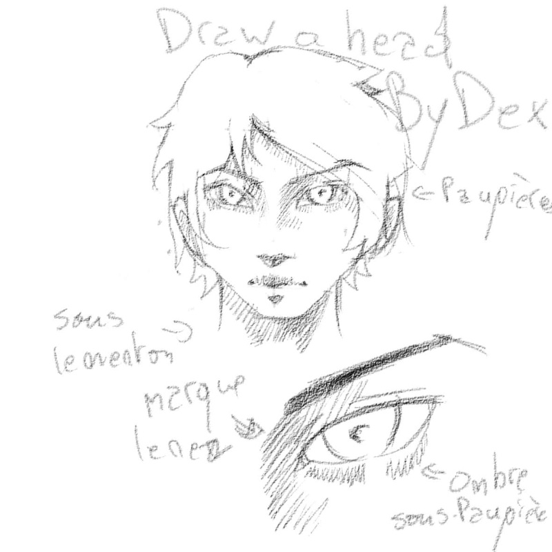 [How To?] Draw a Head. by Dexteria Ombres10