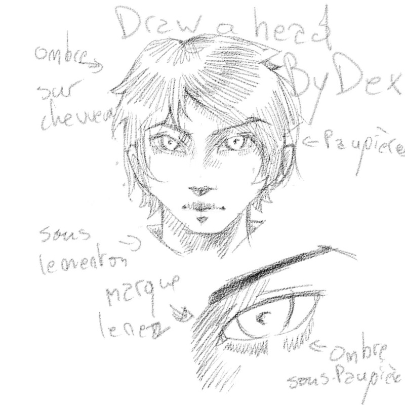[How To?] Draw a Head. by Dexteria Ombres11