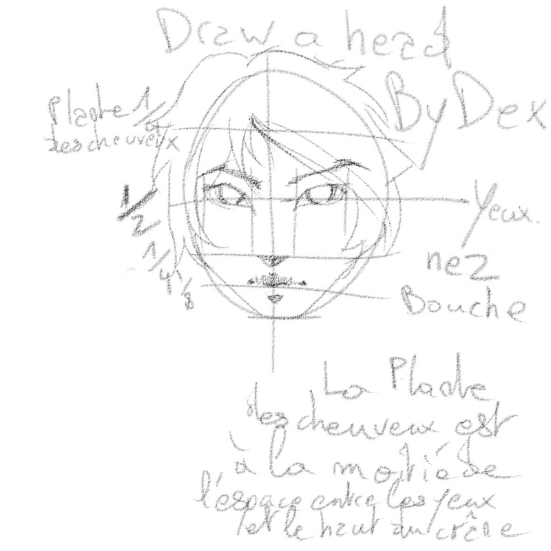 [How To?] Draw a Head. by Dexteria Plante10