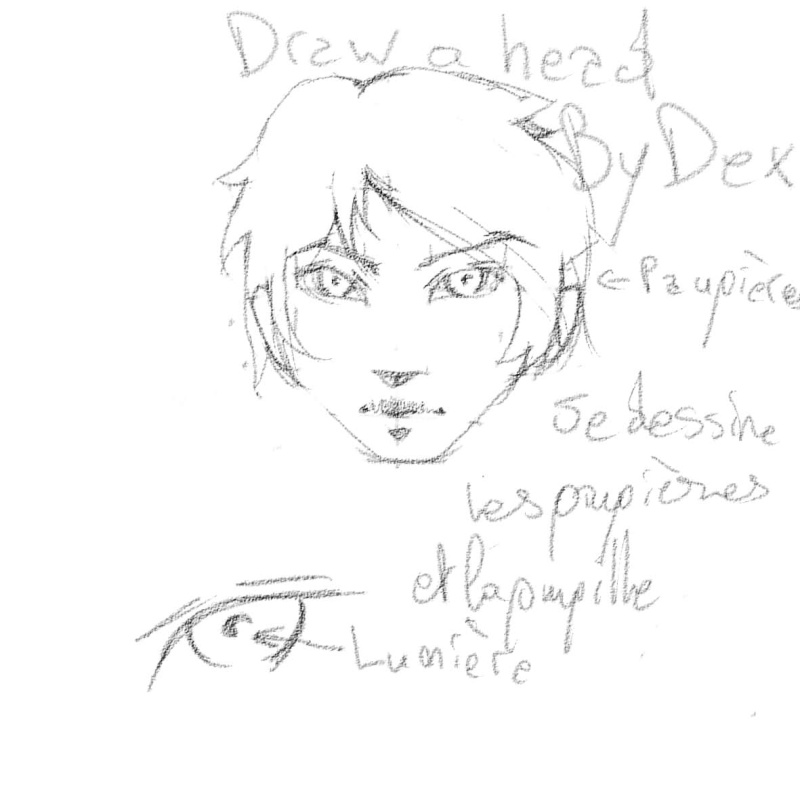[How To?] Draw a Head. by Dexteria Pupill10