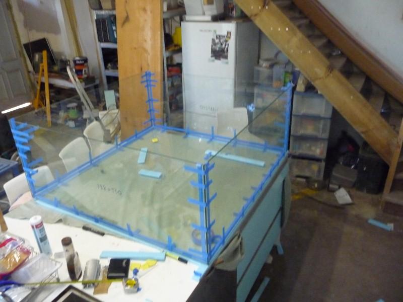 DIY Aquarium P1060310