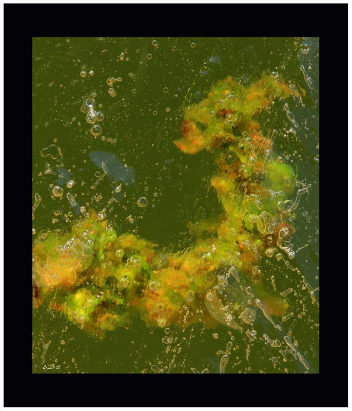 la galerie des glaces [PHOTO DE LA SEMAINE DU 4 Mai AU 11 Mai 2012]