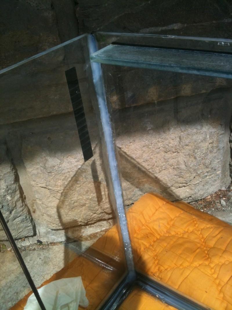projet d'aquarum d'angle Photo_18