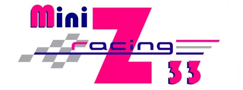 Mini Z racing 33