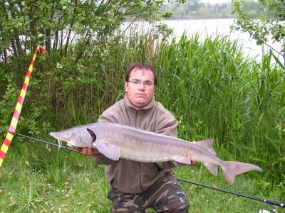 Ma deuxième passion la pêche  16473410