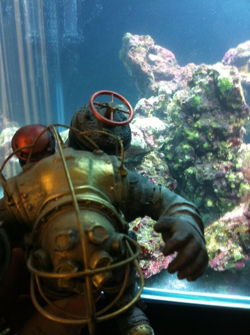 nano dennerle 60l devenue red sea Max 130D - Page 2 Photo-11
