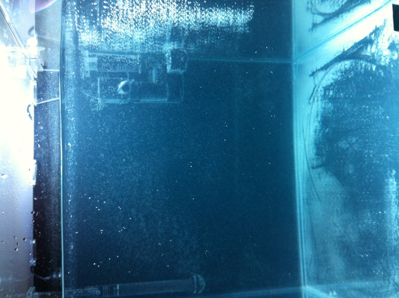nano dennerle 60l devenue red sea Max 130D - Page 2 Photo_13