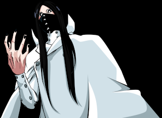 Bleach 599 Tumblr10
