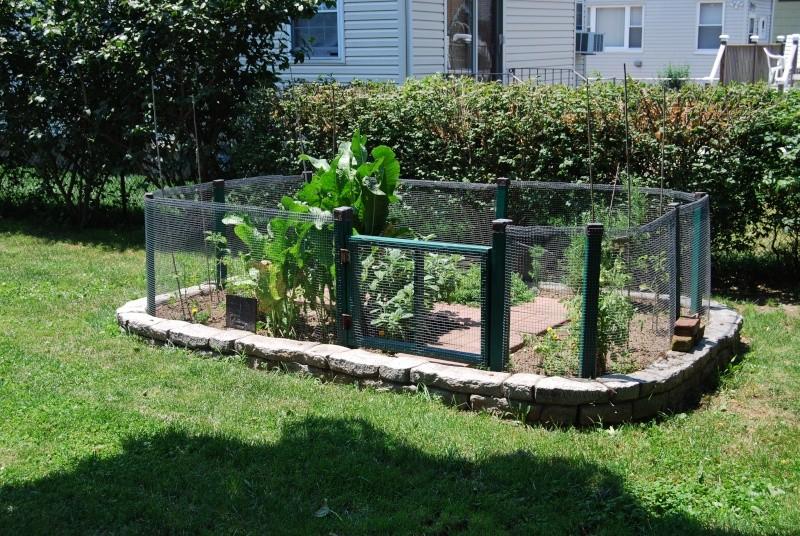 Show us your garden Dsc_0511