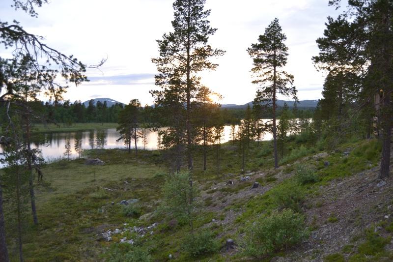 Retour  de pêche à Fjällvattnet Dsc_0314