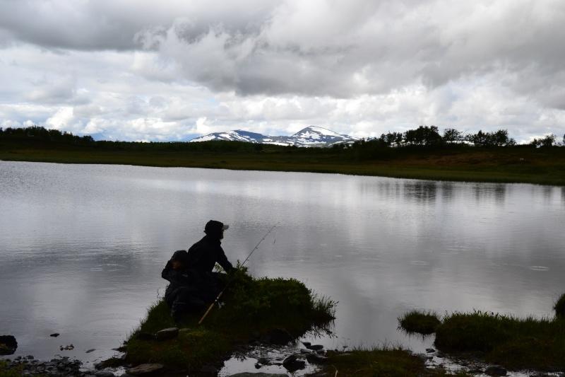 Retour  de pêche à Fjällvattnet Dsc_0415