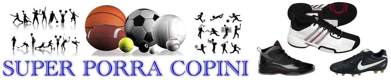 Liga Manager Copini