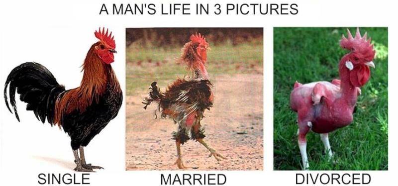 Life : Male vs Female Man_si10